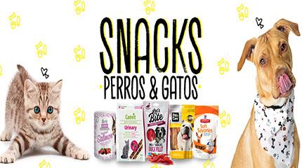 snack-gatos-en-lima